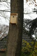 De bomen langs de Vorweg hangen al vol met nestkastjes.
