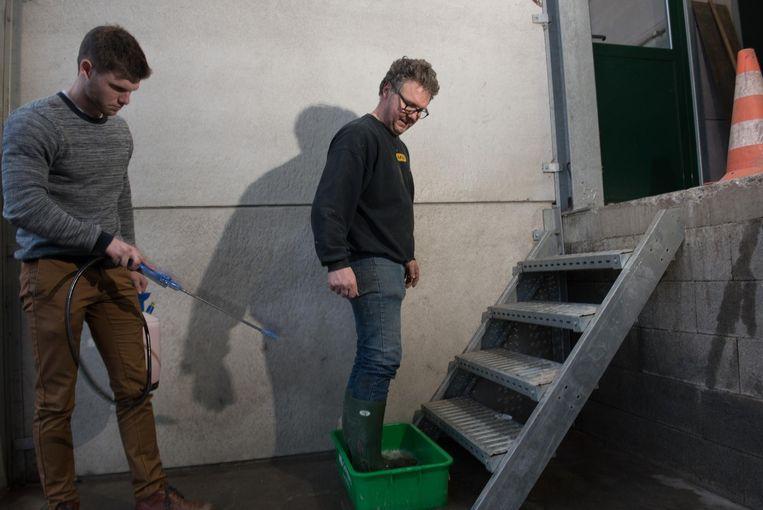 Bedrijfsleider Christ Berth toont hoe hij eerst met zijn schoenen in een ontsmettend bad gaat, terwijl zoonTimo een desinfecterend product gebruikt.