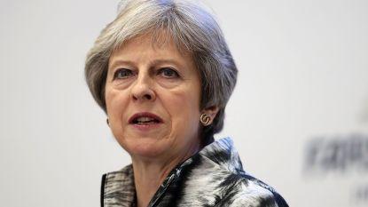 Britse premier wint nipt stemming in parlement
