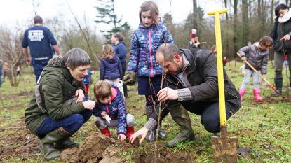 Nieuw bos op komst in Broevink