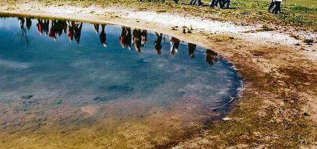 Provincie koopt twintig hectare grond in Sprang-Capelle, nog 115 te gaan