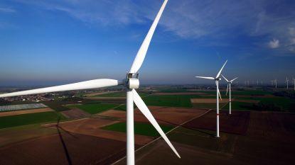 Waarom heeft een windturbine drie wieken? En waarom draaien ze met de klok mee? Weetjes over windturbines op 'Dag van de Wind'
