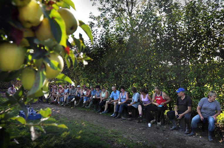Poolse werknemers in Nederland houden even pauze. Beeld Marcel van den Bergh / de Volkskrant