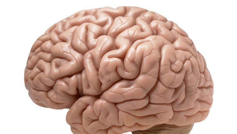 Door patiënten te onderkoelen kan de kans op hersenschade sterk worden beperkt. Beeld null