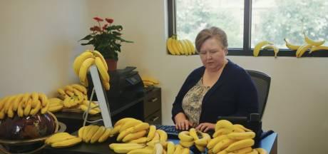 De voorspelling van onze radio-dj's: 'Banana wordt dé zomerhit'