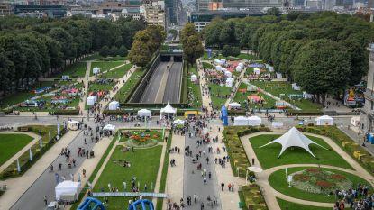 Eerste Europees festival van Democratie in Jubelpark