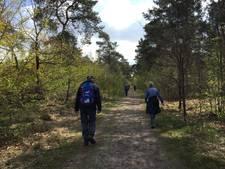 'De laatste kilometers gaan op karakter' bij de vijftigste editie van de Lentetocht in Dongen