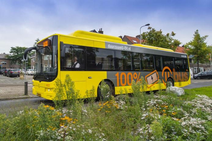 Verschillende buslijnen worden de komende tijd omgeleid.