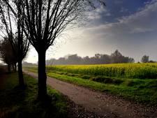 Tuinders in Etten-Leur vragen om meer vrijheid in buitengebied