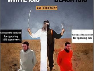 Het beeld dat de hele moslimwereld verdeelt