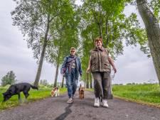 Toekomst van Kraaiennest zorgt voor onzekerheid bij hondenuitlaatservices