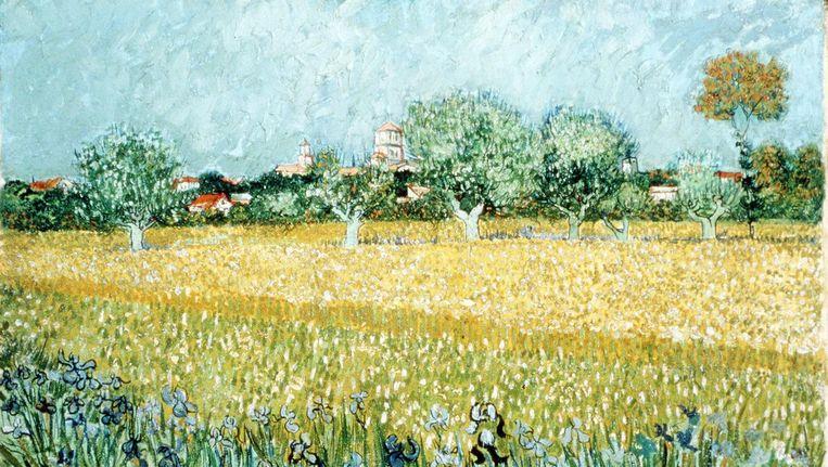 Vincent Van Goghs Veld met bloemen vlakbij Arles. Geschilderd in 1888. Beeld AFP