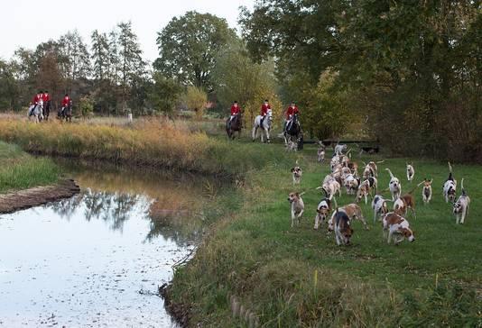 De meute honden en ruiters passeerde woensdagmiddag ook de Keizersbeek.