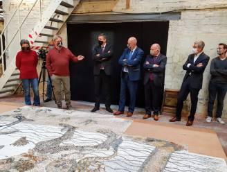 Puzzelen met 480.000 steentjes: Museum voor Schone Kunsten krijgt grootste kunstmozaïek van Vlaanderen