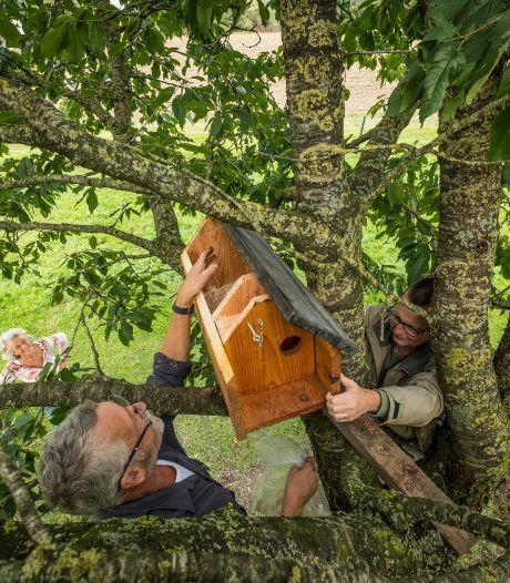 Deze Heerder nestkast voor steenuilenfamilie is een ontoegankelijke vesting voor marters