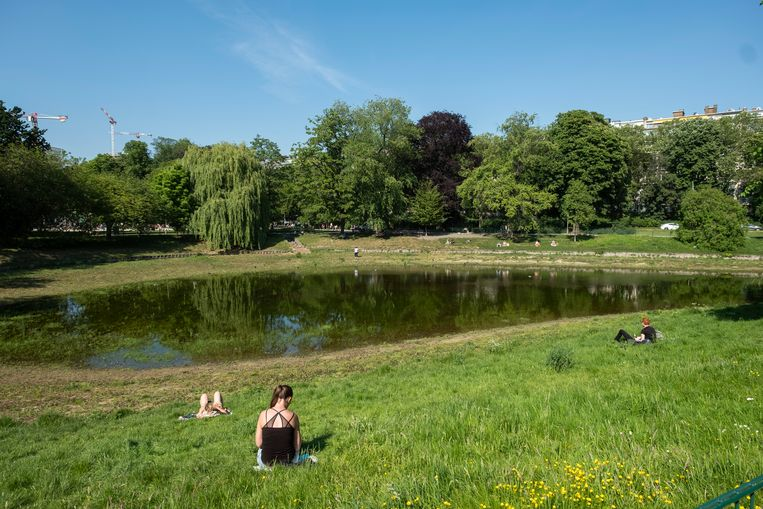 Toch al beter dan de voorbije paar jaar: er staat opnieuw een beetje water in de vijver van het Stadspark.