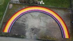 Overschot aan bloemen? Plantenkwekerij maakt regenboog