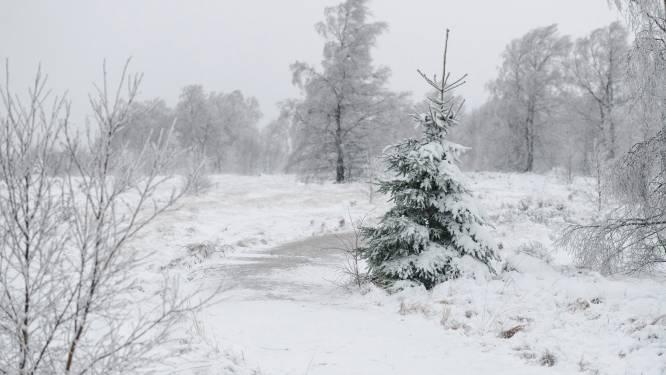 Zwaarbewolkt met nog enkele plaatselijke winterse buien