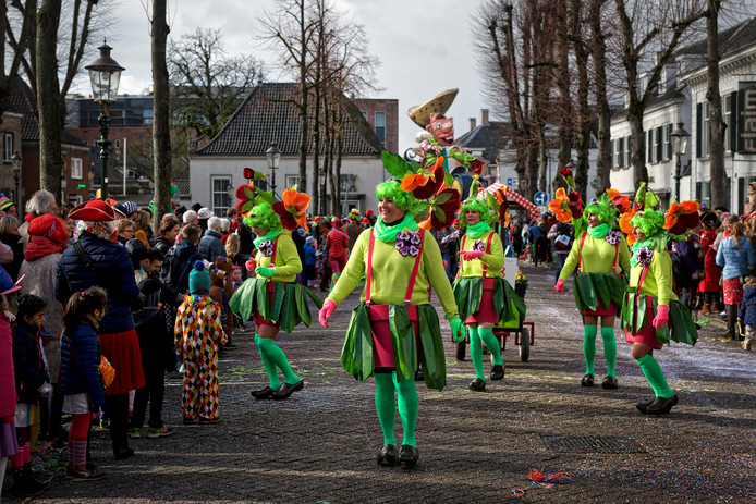 Soms was er even hagel of sneeuw, en soms brak de zon door tijdens de optocht, zoals hier op de Heuvel terwijl de groep Jan Platzak met als motto Jan Platzak alias Jan Vieux en de Valse Viooltjes passeert.
