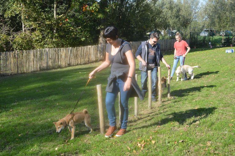 De honden en hun baasjes tijdens de demonstratie van hondenclub 'Onze gezel' op de hondenlosloopweide.