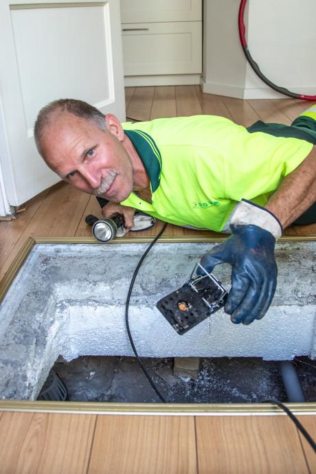 Een lik pindakaas doet wonderen: Jan Marskamp grijpt duizend ratten per jaar