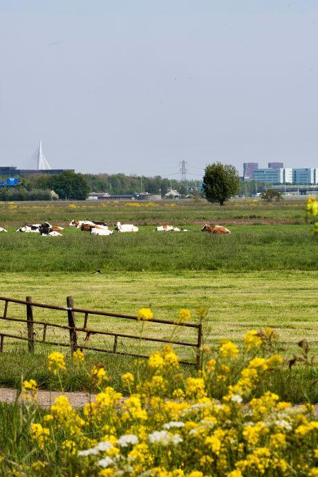 Tweede Kamer voert druk op om woningen in polder Rijnenburg te bouwen