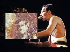 Queen-superfan ziet silhouet van Freddie Mercury op gebakken varkensfiletlapje