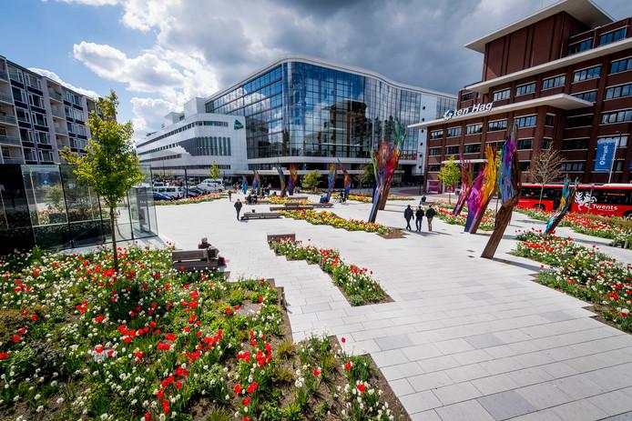 ENSCHEDE - Overzichtfoto van Koningsplein tussen ziekenhuis MST en Casino met bloeiende perken tussen de kunst.