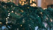 Kerstboomophaling vanaf 7 januari