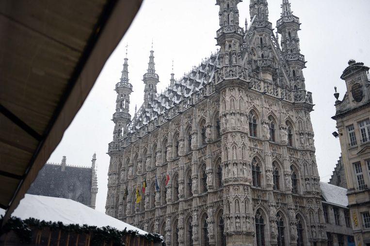 De sneeuw maakt de Leuvense daken mooi wit.