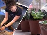 Op iedere school horen planten, vindt Femke