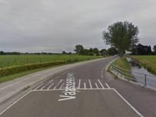 Deel Vaassenseweg Terwolde volgende week afgesloten vanwege knotten van wilgen