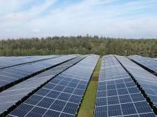 HWduurzaam wil zich inkopen in zonnepark Heinenoord: 'Opbrengsten in Hoeksche Waard houden'