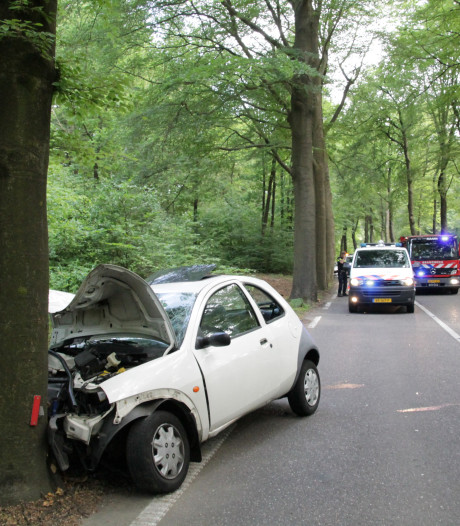 Automobilist knalt tegen boom op Zeisterweg in Woudenberg