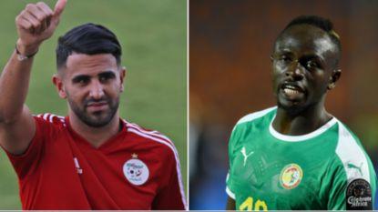 """Kenners Leekens en Saintfiet analyseren finalisten Africa Cup: """"De sterren hebben de sleutel in handen"""""""