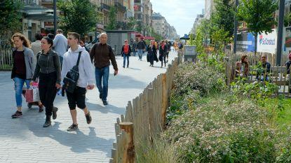 Gewest bekijkt mogelijkheid op deelrolstoelen in voetgangerszone