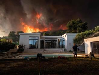 Franse campings bij Marseille ontruimd door felle bosbrand