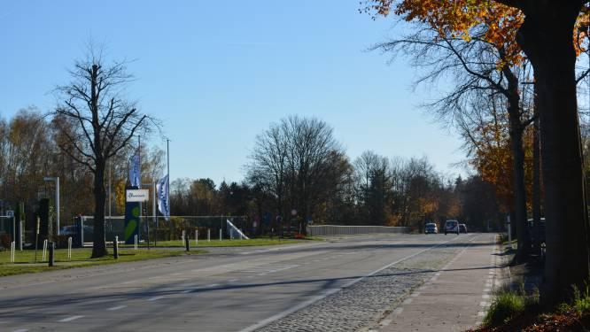 Verkeer over één rijstrook tijdens werken op de Brusselsesteenweg