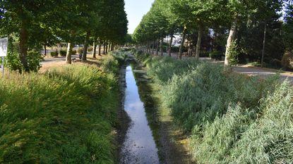 Waterpeil Langelede staat alarmerend laag
