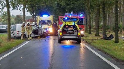 Bestuurder zwaargewond na frontale crash tegen boom in Bruggestraat