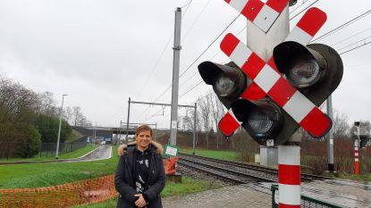 """Kamerlid Marianne Verhaert (Open Vld): """"Corona zal ook roet in het eten gooien van de Kempense treinreiziger"""""""