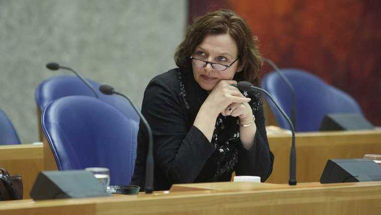 Minister van Volksgezondheid, Welzijn en Sport Edith Schippers. Beeld anp