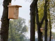 Groot aantal nestkasten in Wierden wacht vervanging