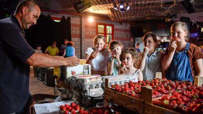 Gemeente zal VB-voorstel voor buurderij verder uitwerken