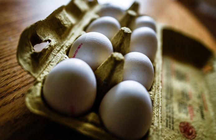De Doetinchemse zou onder meer eieren hebben gestolen. Foto ter illustratie.
