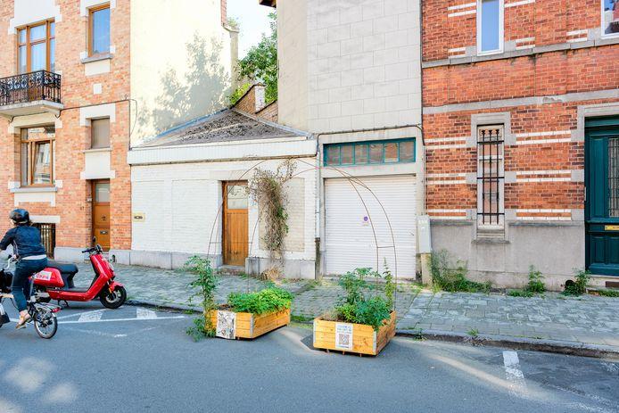 nieuw stadstuintje in de Madeliefjesstraat.