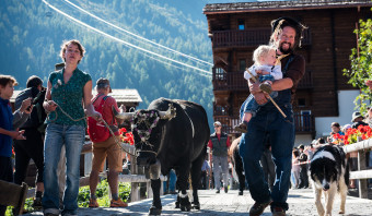 Het is feest in Zwitserland, de koeien komen terug