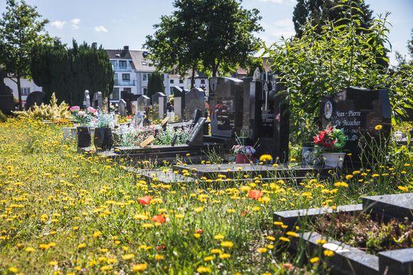 Begraafplaatsen worden bloemenvelden.
