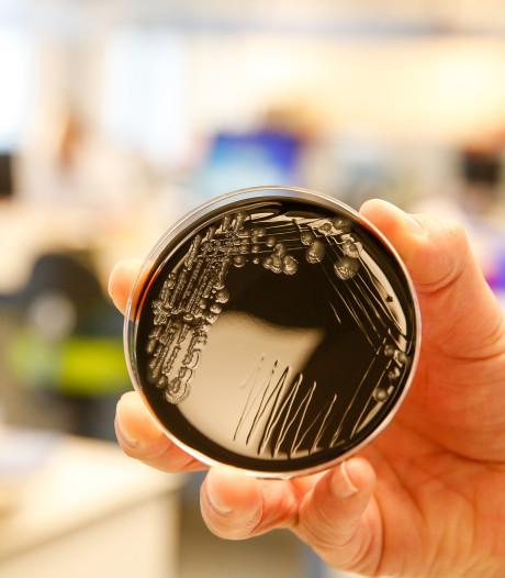 Des traces de légionellose dans cinq entreprises, deux nouveaux patients diagnostiqués