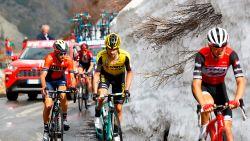 LIVE GIRO. Italiaanse bergkoning andermaal in de aanval, favorieten houden elkaar in bedwang